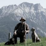 Hundeausbildung in der Jagdschule